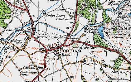 Old map of Odiham in 1919