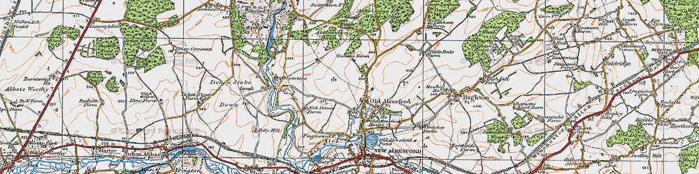Old map of Abbotstone Woods in 1919
