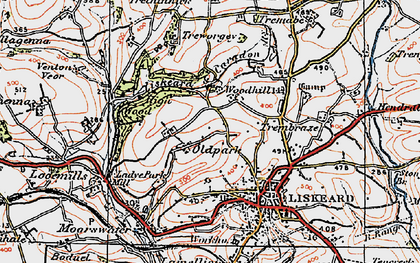 Old map of Old Park in 1919