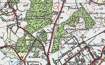 Old map of Ashtead Common in 1920
