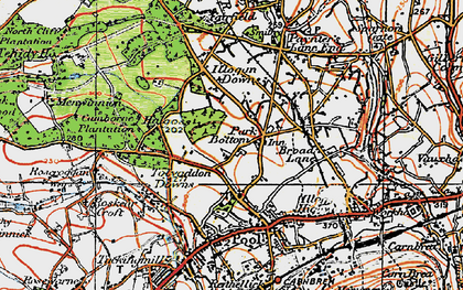 Old map of Park Bottom in 1919