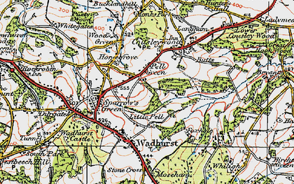 Old map of Pell Green in 1920