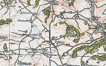 Old map of Pelynt in 1919