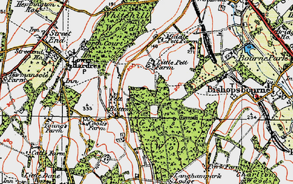 Old map of Gorsley Wood in 1920