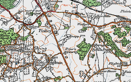 Old map of Ast Wood in 1920
