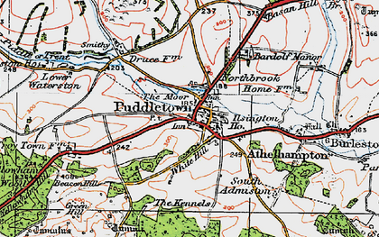 Old map of Bardolfeston Village in 1919