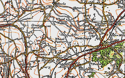 Old map of Radnor in 1919