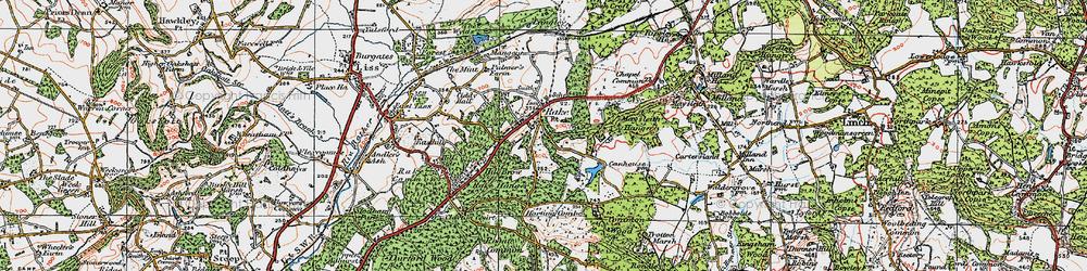Old map of Rake in 1919