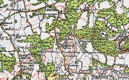 Old map of Woolbeding Common in 1919