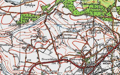 Old map of Reskadinnick in 1919