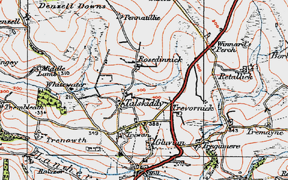Old map of Rosedinnick in 1919