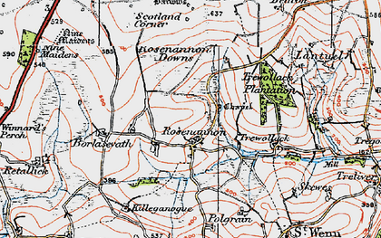 Old map of Rosenannon in 1919