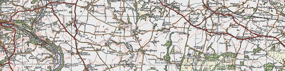 Old map of Ryton in 1921