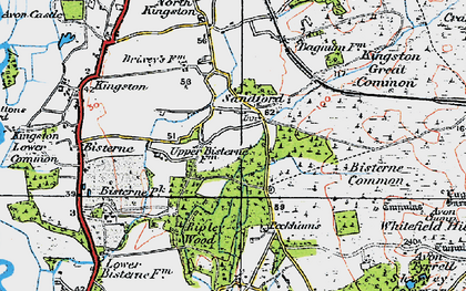 Old map of Avon Tyrrell in 1919