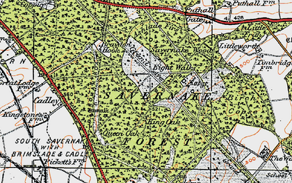 Old map of Savernake Forest in 1919