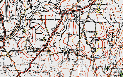 Old map of Seworgan in 1919