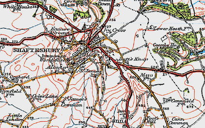 Old map of Shaftesbury in 1919