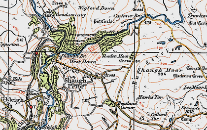 Old map of Wigford Down in 1919