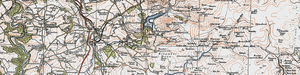 Old map of Yellowmead in 1919