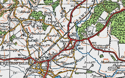 Old map of Adhurst St Mary in 1919