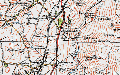 Old map of Widgery Cross in 1919