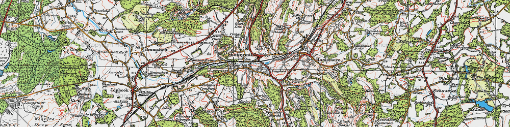 Old map of Shottermill in 1919