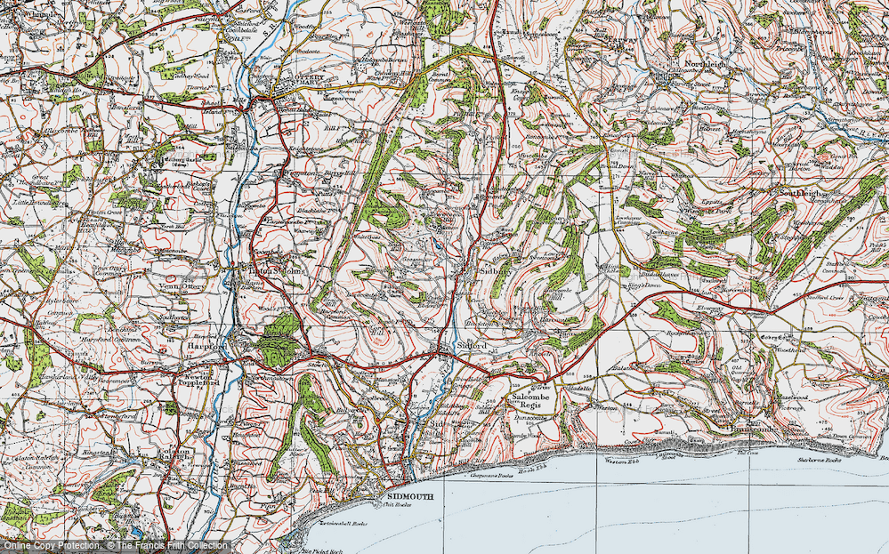 Old Map of Sidbury, 1919 in 1919