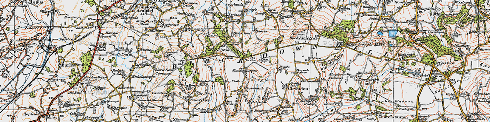 Old map of Whitehams in 1919