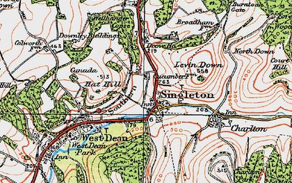 Old map of Singleton in 1919