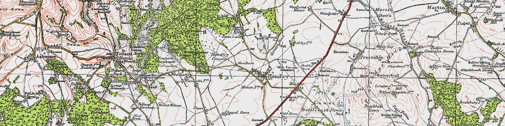 Old map of Wyke Down in 1919
