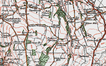 Old map of White Moor Mill in 1925