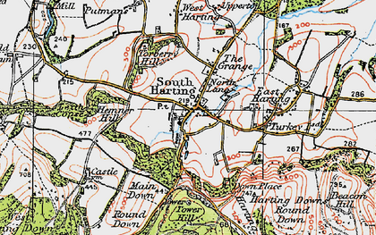 Old map of South Harting in 1919