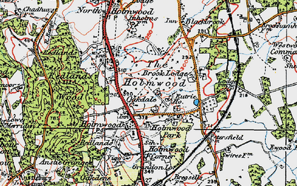 Old map of South Holmwood in 1920