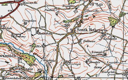 Old map of South Petherwin in 1919