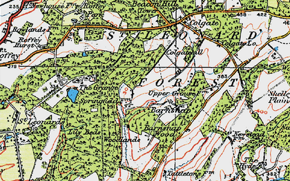 Old map of St Leonard's Forest in 1920