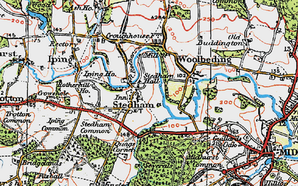 Old map of Stedham in 1919