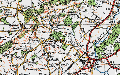 Old map of Ashford Chace in 1919