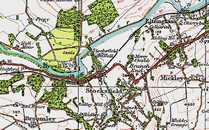Old map of Stocksfield in 1925
