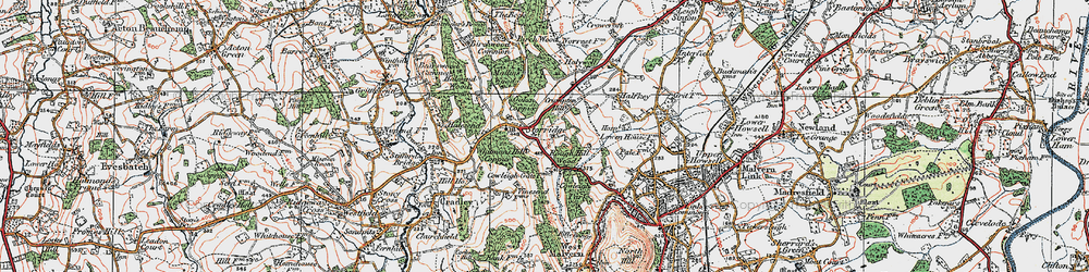 Old map of Whitman's Hill Coppice in 1920
