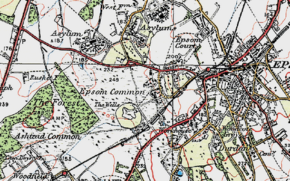 Old map of Woodcote Stud in 1920