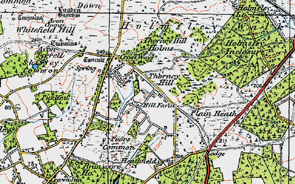 Old map of Whitten Bottom in 1919