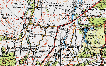 Old map of Thursley in 1919