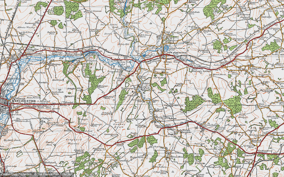 Old Map of Historic Map covering Tichborne Park in 1919