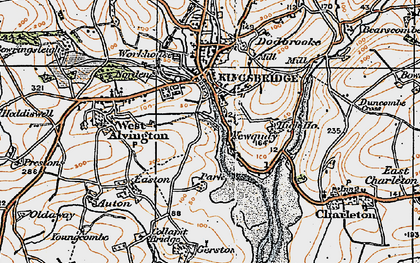 Old map of Ticket Wood in 1919