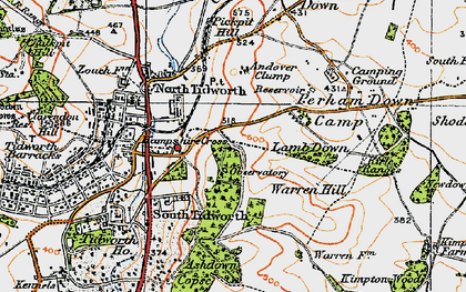 Old map of Ashdown Copse in 1919
