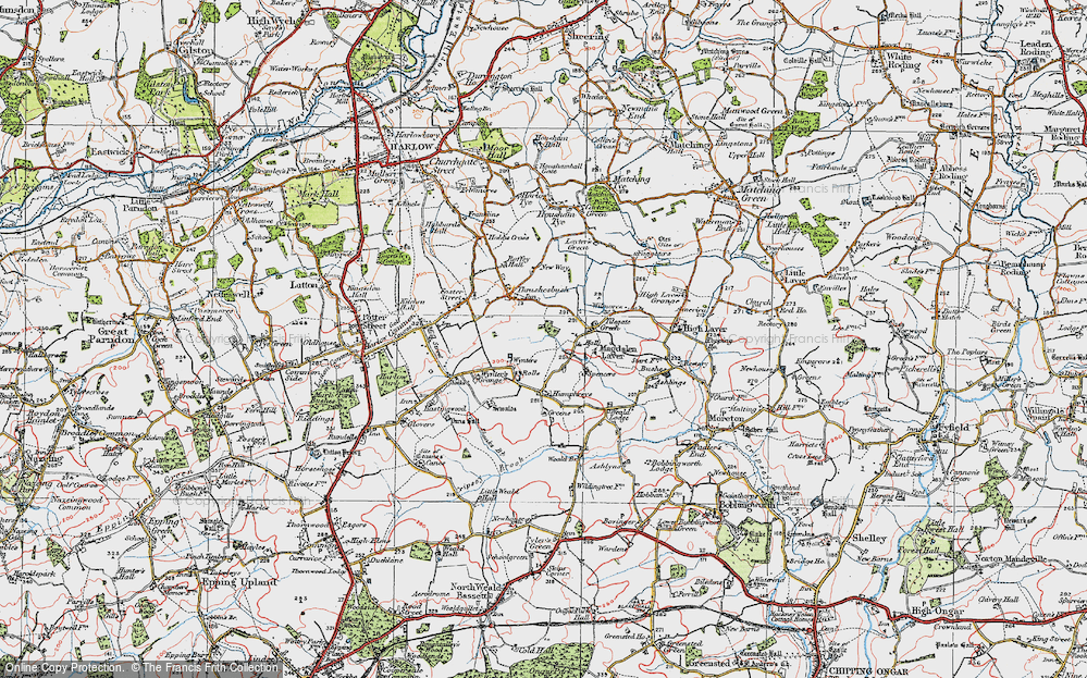 Old Map of Tilegate Green, 1919 in 1919