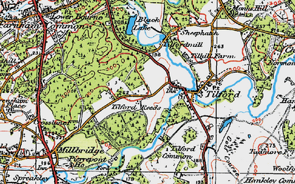 Old map of Tilford Reeds in 1919