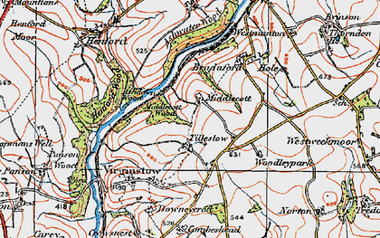 Old map of Ashwater Wood in 1919