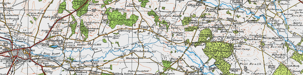 Old map of Woodsford Lower Dairy in 1919