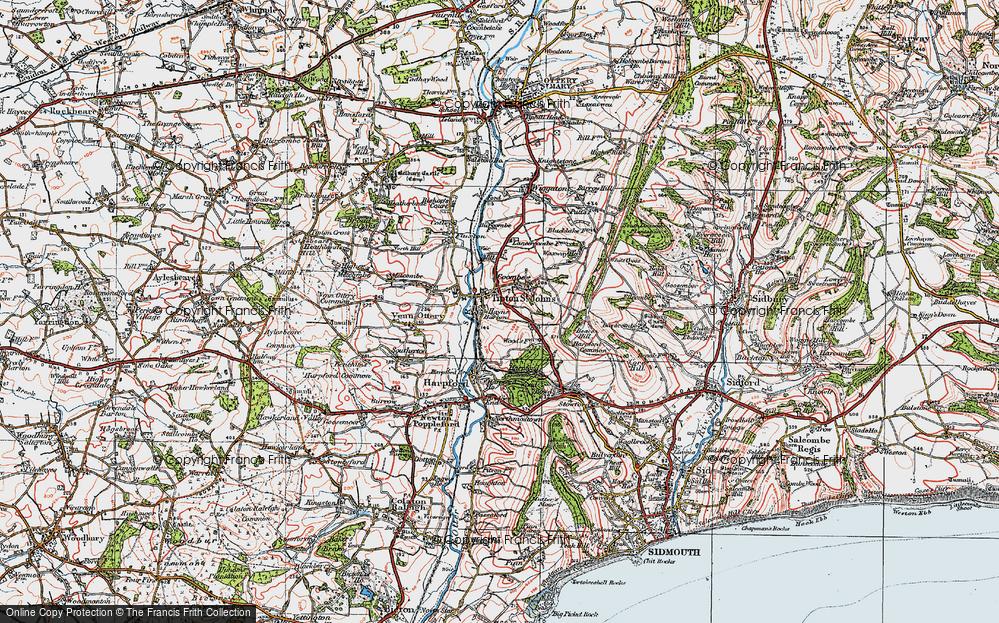 Old Map of Tipton St John, 1919 in 1919